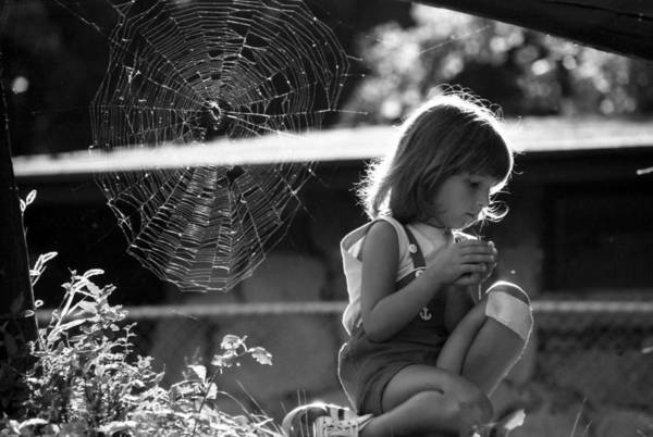 Photograph - Raluca And The Spiderweb Iv by Emanuel Tanjala