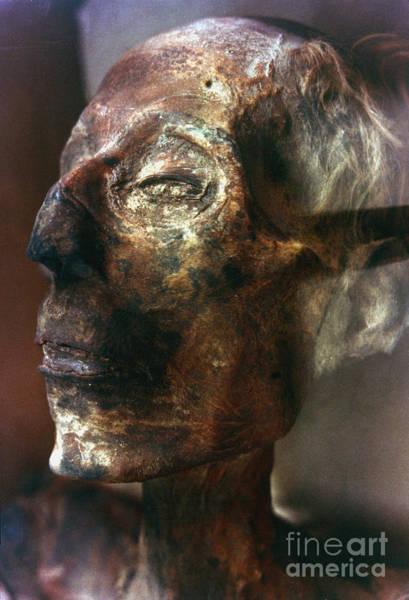 Photograph - Ramses II (1292-1225 B.c.) by Granger