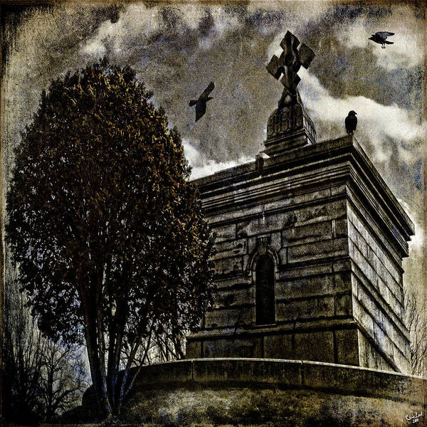 Photograph - Ravens Roost by Chris Lord