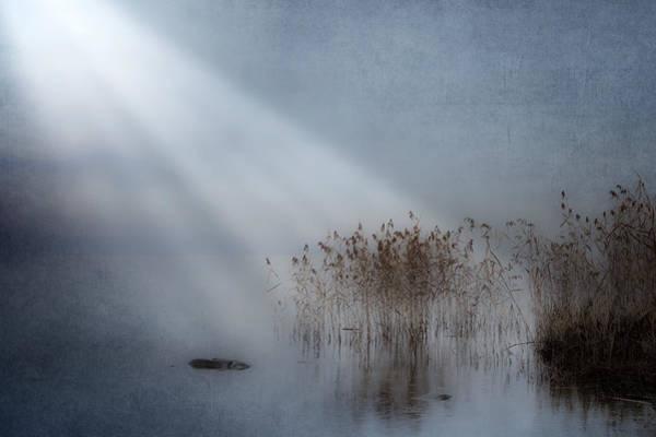 Lake Maggiore Photograph - Rays Of Light by Joana Kruse