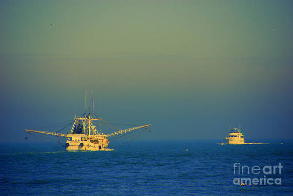 Wall Art - Photograph - Ready For The Night Catch by Susanne Van Hulst