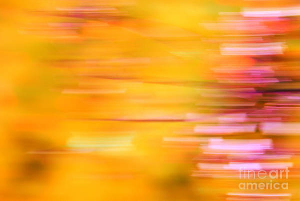 Abstract Impressionism Photograph - Rectangulism - S07a by Variance Collections