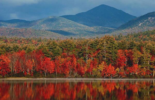 Photograph - Red Autumn Reflections by Nancy De Flon