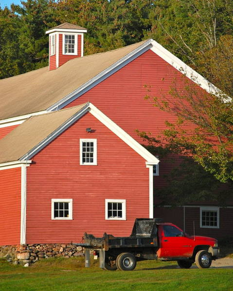 Photograph - Red Barn - Red Truck by Mary McAvoy