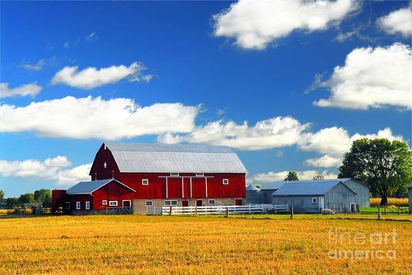Farmyard Photograph - Red Barn by Elena Elisseeva