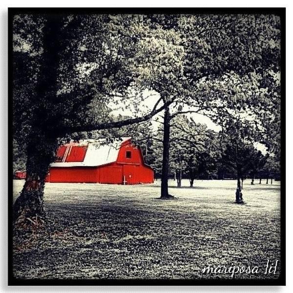Edit Photograph - Red Barn by Mari Posa