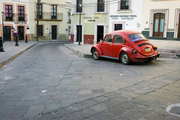 Zacatecas Photograph - Red Beetle by Luc Novovitch