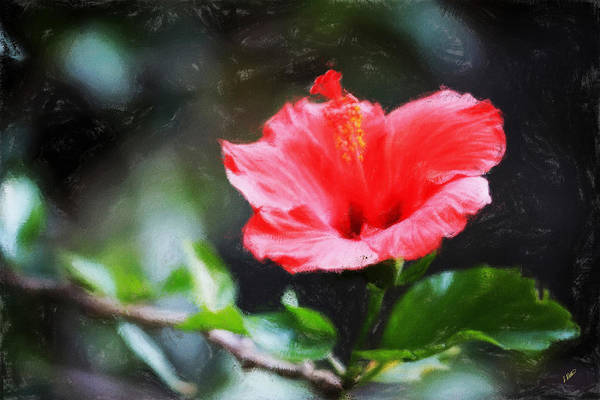 Painting - Red Hibiscus 302 by Dean Wittle