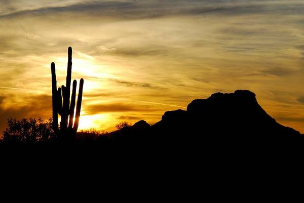 Photograph - Red Mountain Sunset by Tam Ryan