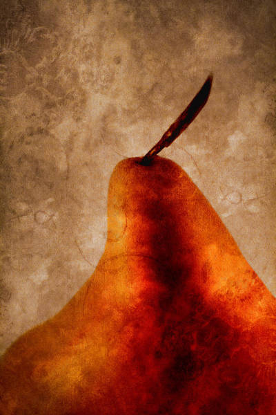 Formal Wall Art - Photograph - Red Pear I by Carol Leigh