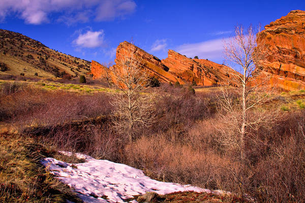 Photograph - Red Rocks Park Colorado II by David Patterson