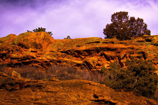 Photograph - Red Rocks Park Colorado Vi by David Patterson