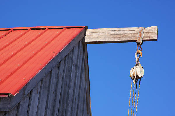 Photograph - Red Roof Barn by Tom Singleton
