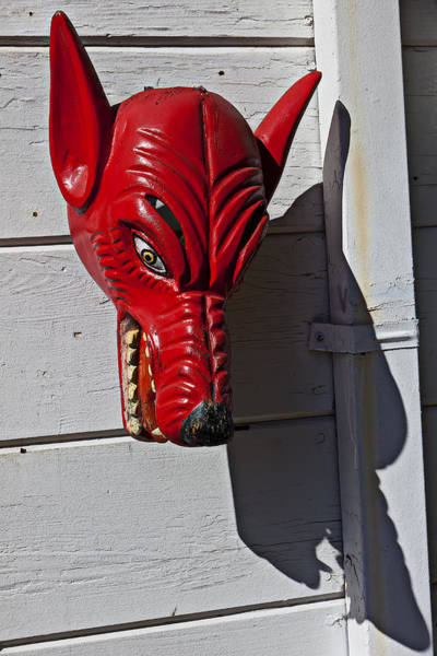 White Wolf Photograph - Red Wolf Mask by Garry Gay