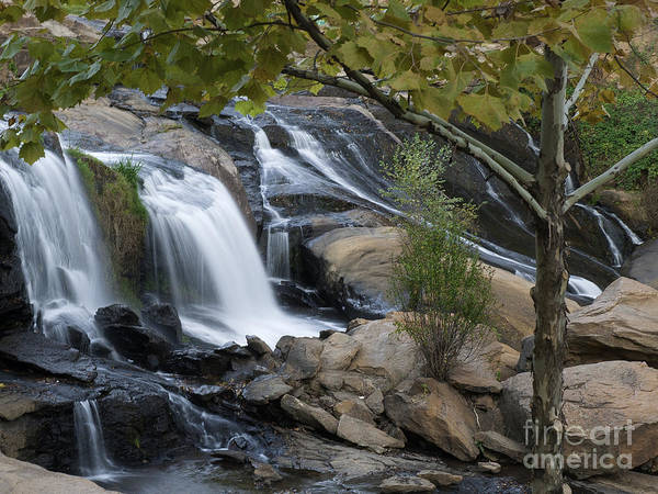 Photograph - Reedy Falls II by David Waldrop