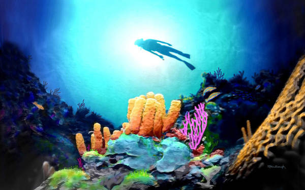 Photograph - Reef Diver Filtered by Duane McCullough
