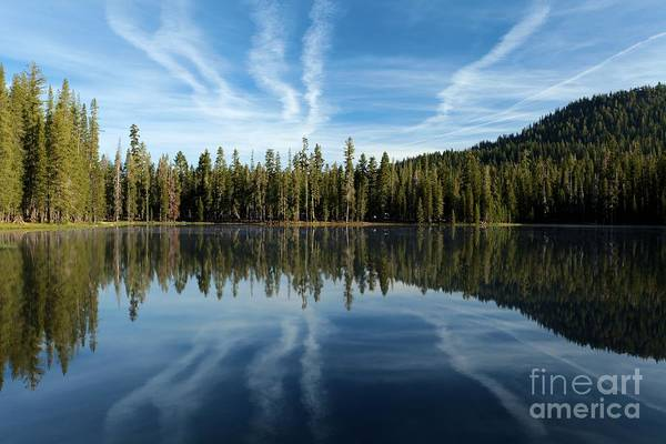 Photograph - Reflecting Blue by Adam Jewell