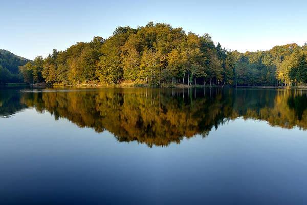 Photograph - Reflection by Ivan Slosar