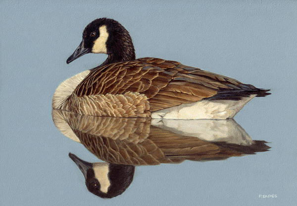Painting - Reflection by Peter Eades