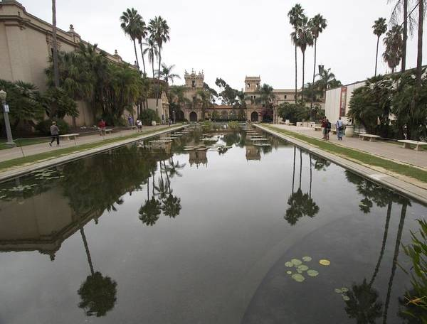 Photograph - Reflection Pool Number 2 by Jeremy McKay