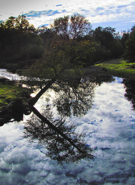 Photograph - Reflections 1 by Tony and Kristi Middleton