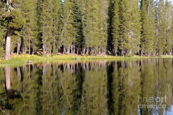 Photograph - Reflections Along Summit Lake by Adam Jewell