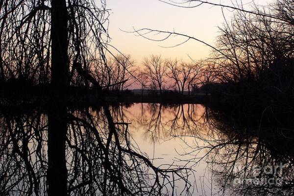 Photograph - Reflections by Dorrene BrownButterfield