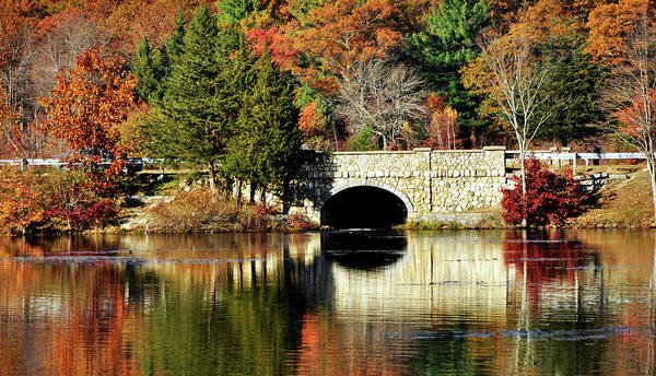 Photograph - Reflections Of Fall by Joanne Brown