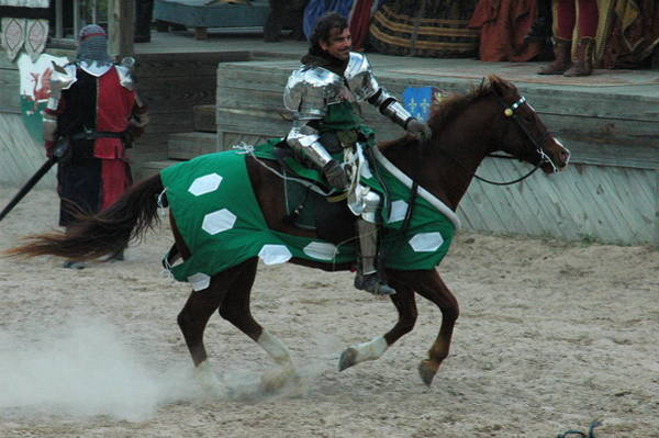 Photograph - Renaissance Knight by Teresa Blanton