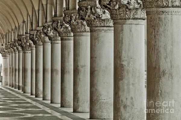 Wall Art - Photograph - Renaissance by Marion Galt