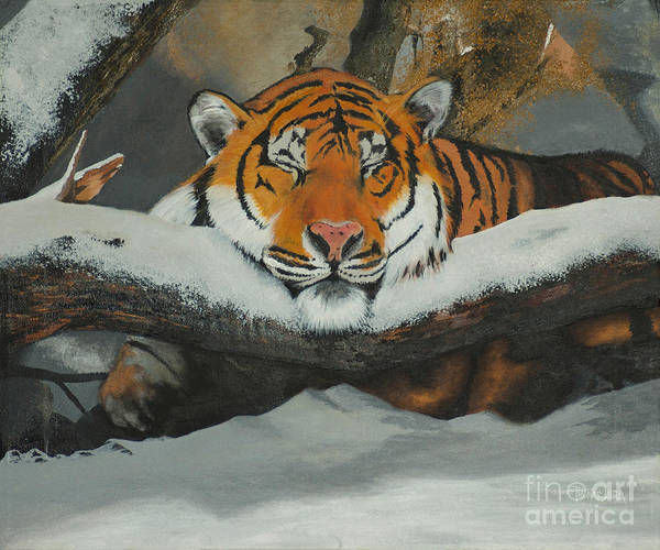 Painting - Resting Tiger by Tom Luca