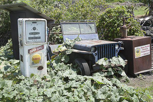 Photograph - Retired Willys by Tony and Kristi Middleton