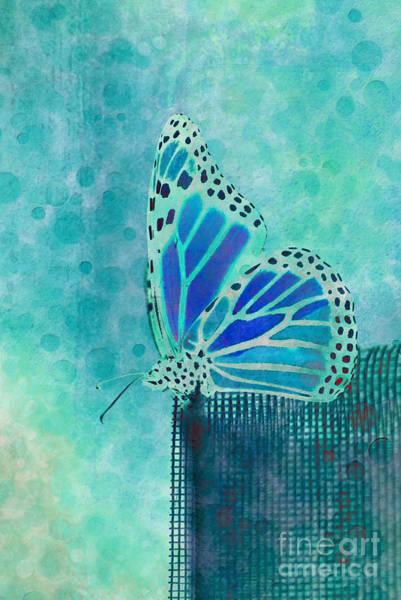 Aqua Digital Art - Reve De Papillon - S02a2 by Variance Collections