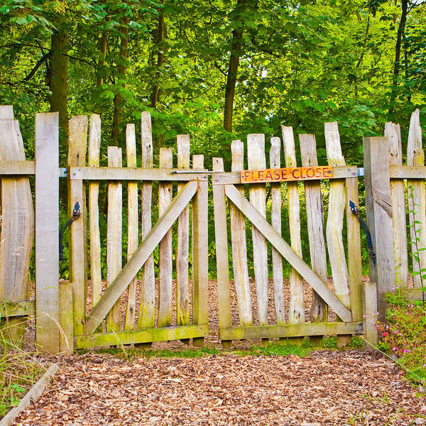 Entry Photograph - Rickety Gate by Tom Gowanlock