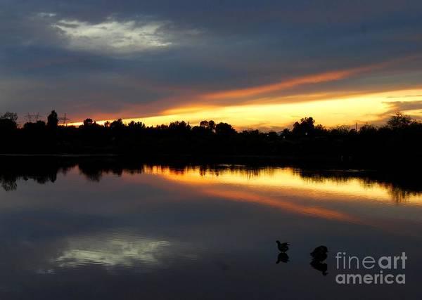 Photograph - Riparian Sunset by Tam Ryan