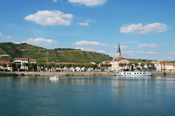 Rhone River Photograph - River And Vineyard by Alain Cachat