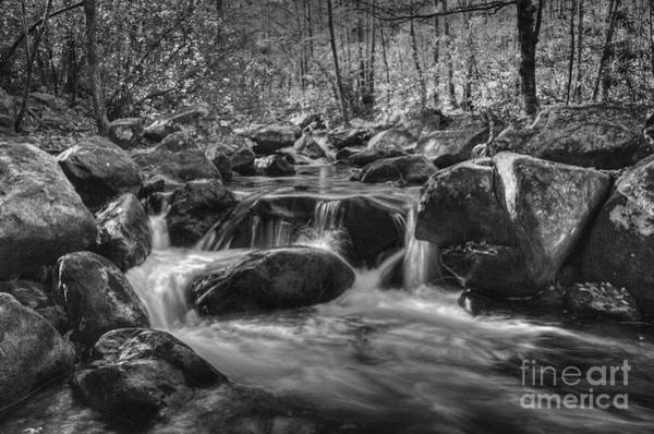 Photograph - River Boulders At Jones Gap by David Waldrop