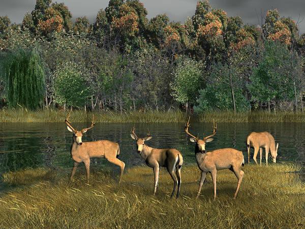 Sportsman Digital Art - River Deer by Walter Colvin