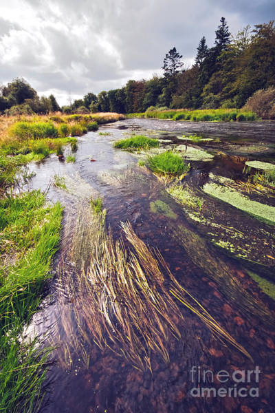 Wall Art - Photograph - River Landscape by Wedigo Ferchland