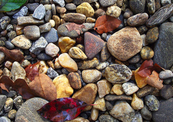 Photograph - River Rocks 3 by Duane McCullough