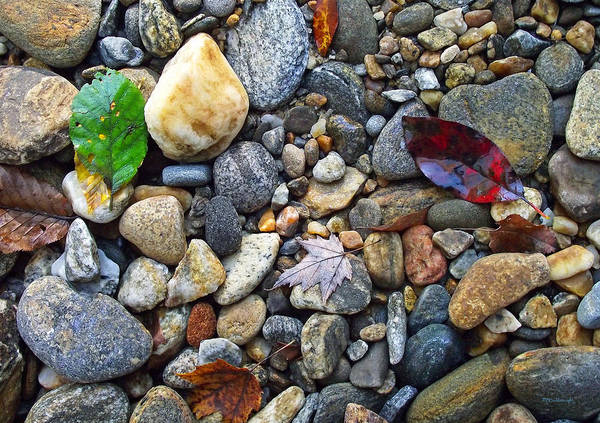 Photograph - River Rocks 4 by Duane McCullough