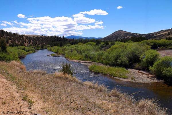 Photograph - River View by C Sitton
