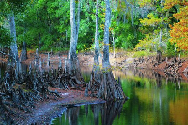 Photograph - Riverside by Bill Barber