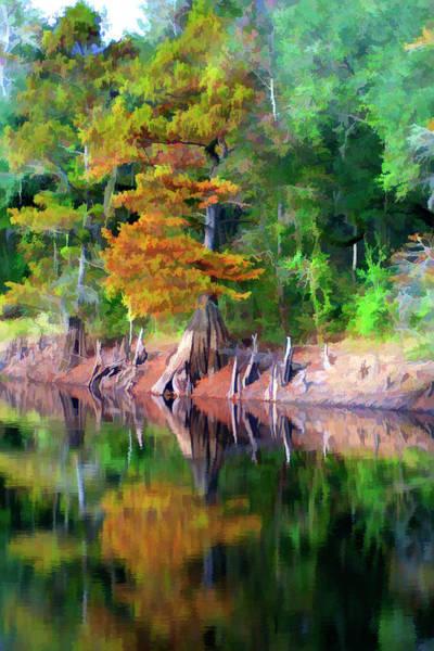 Photograph - Riverside Park by Bill Barber