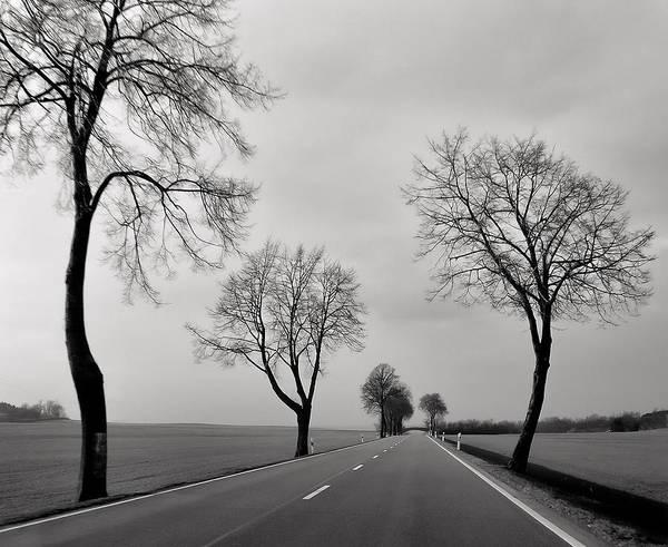 Road Through Windy Fields Art Print