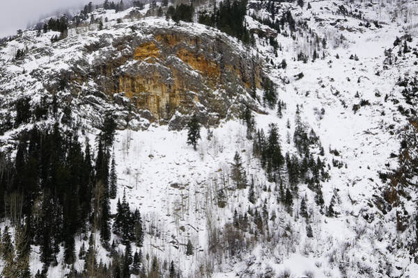 Photograph - Rock Face In Snow by David Waldrop
