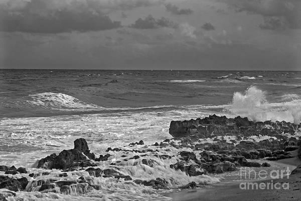 Photograph - Rock Reef by Richard Nickson