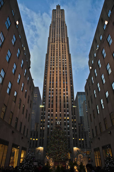 Photograph - Rockefeller Tree by Theodore Jones