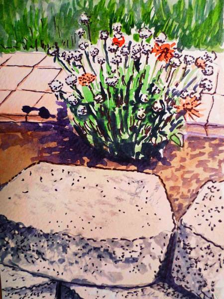 Sketch Book Wall Art - Painting - Rocks And Flowers Sketchbook Project Down My Street by Irina Sztukowski