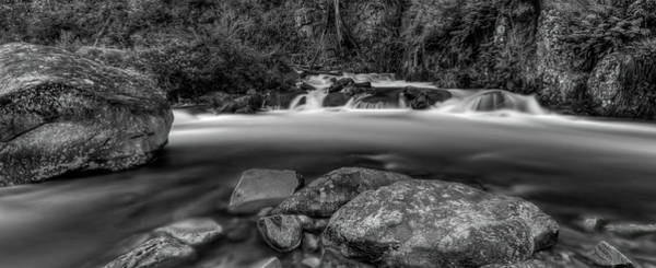 Photograph - Rocks In The Wilderness by Mark Lucey